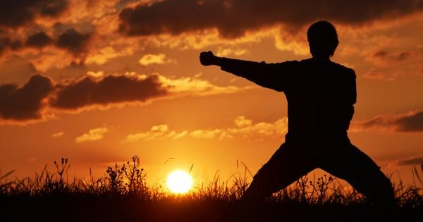 Man practicing karate on the grassy horizon at sun