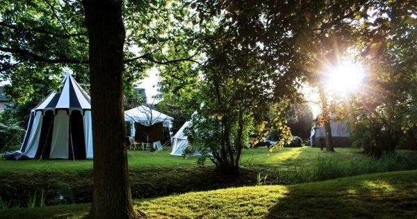 Abendsonne beim Tolkien Tag